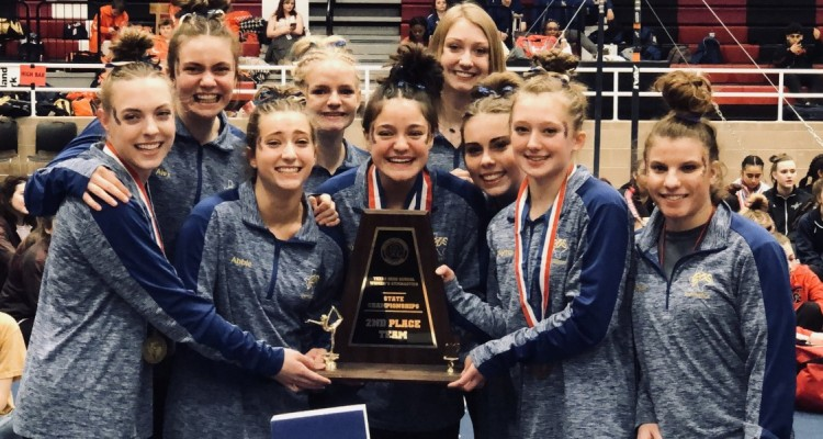 Photo for Boswell Girls' Gymnastics Team Takes 2nd At State!
